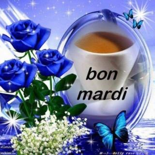 Bonjour du jour et bonsoir du soir - Page 17 Mardi20