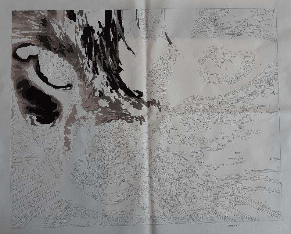 La peinture par numéros 20200410