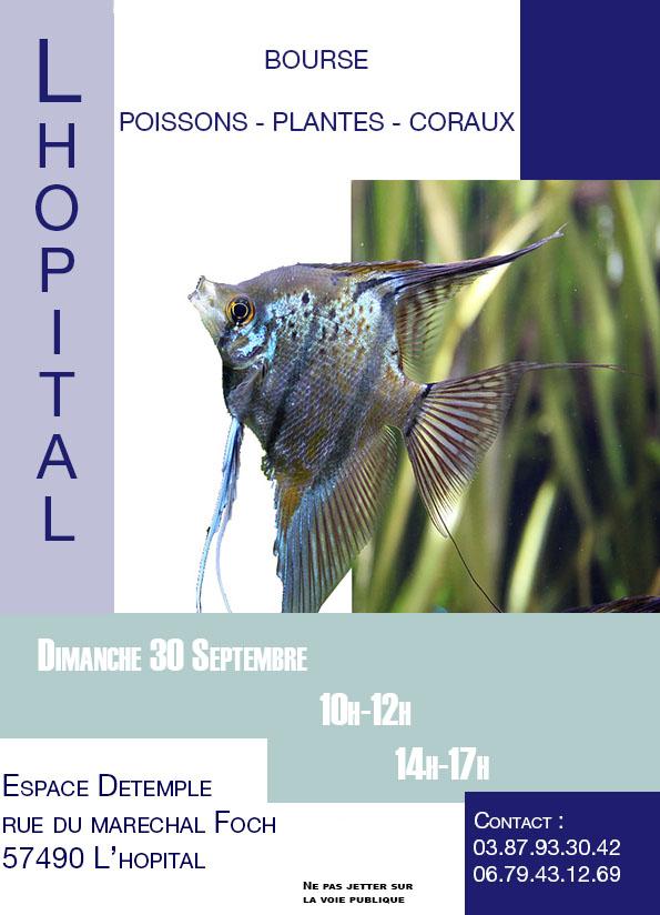 Bourse L'Hôpital (57) - 30 septembre 2018 Bourse11