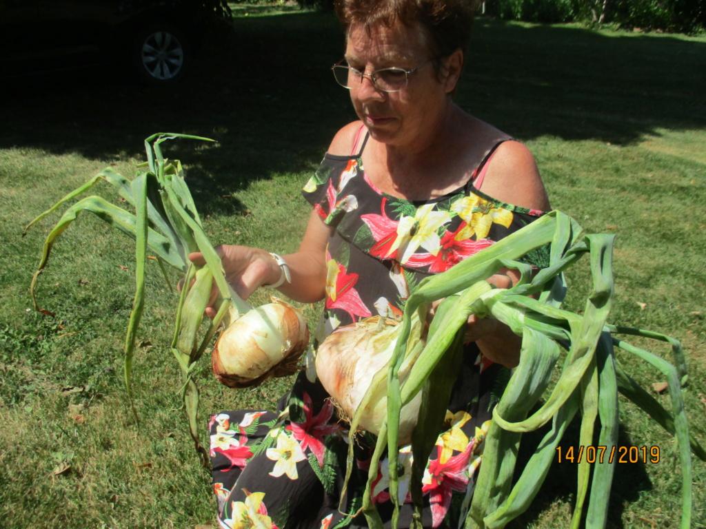Légumes 2018  /2019 / 2020 à cazo  - Page 5 Img_2531