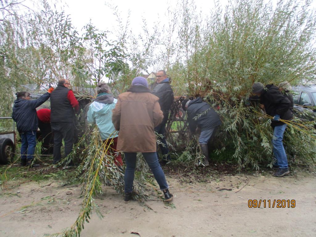 L'osier au jardin : plessis - haie végétale - cabane - tipi - Page 3 Img_3930