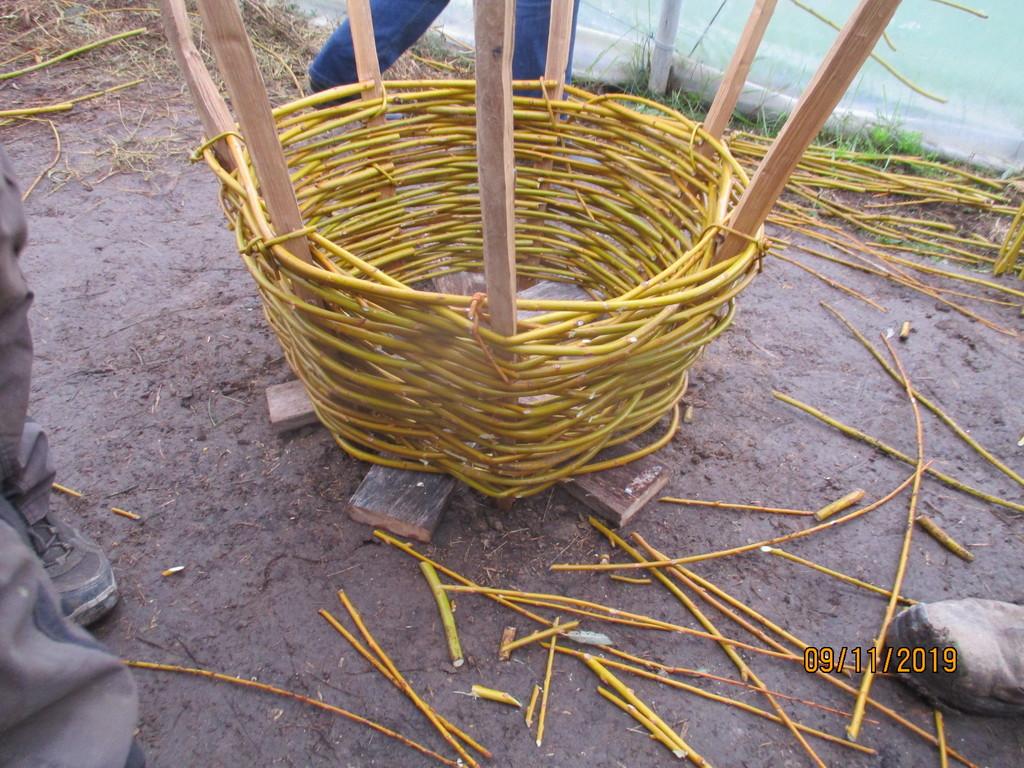 L'osier au jardin : plessis - haie végétale - cabane - tipi - Page 3 Img_4011