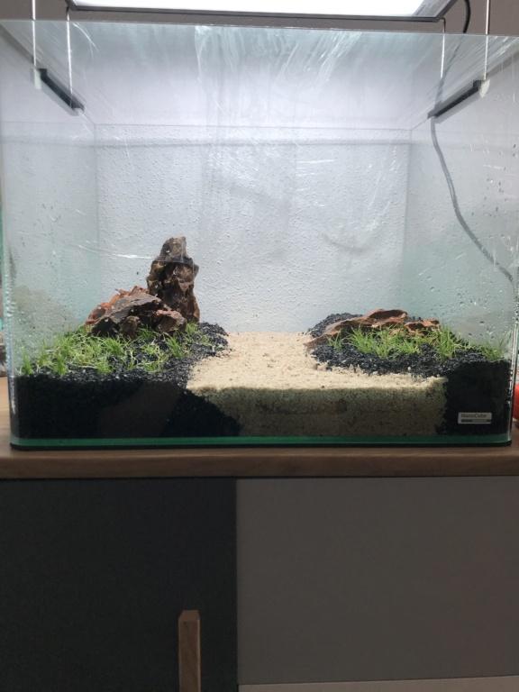 Dry Start avec du Flourite ? Aquascaping  A66f9610