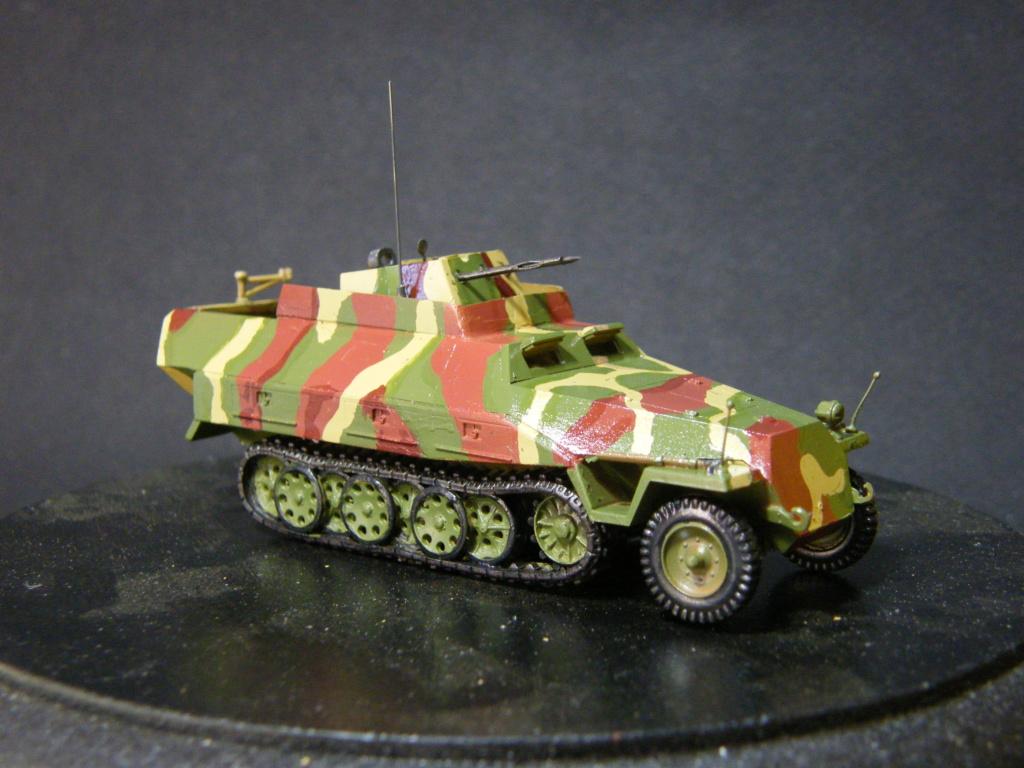 Sdkfz 251/21 Hasegawa/cmk - Terminé Dscf1031
