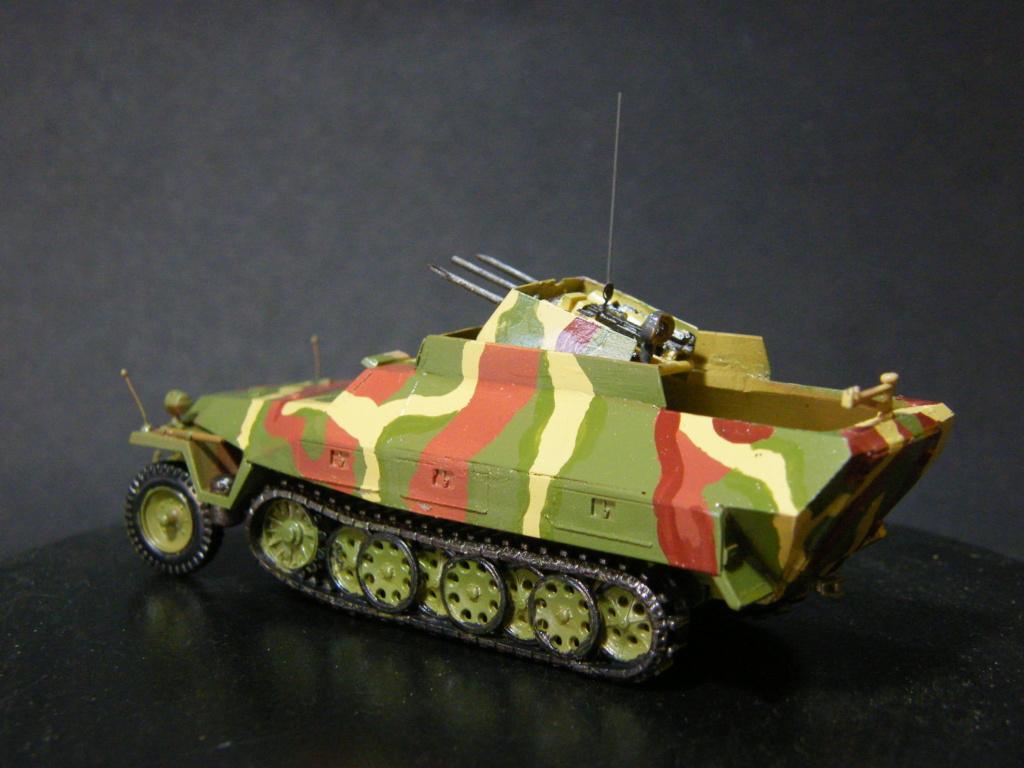 Sdkfz 251/21 Hasegawa/cmk - Terminé Dscf1032