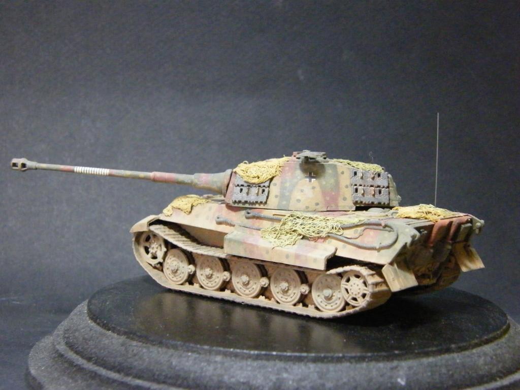 Sdkfz 251/21 Hasegawa/cmk - Terminé Dscf1110