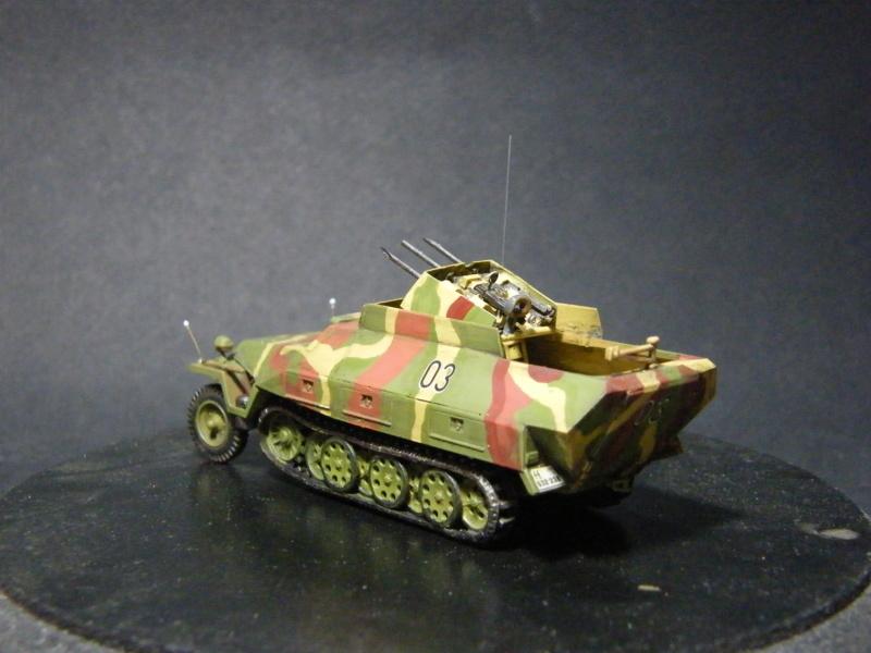 Sdkfz 251/21 Hasegawa/cmk - Terminé Dscf1114