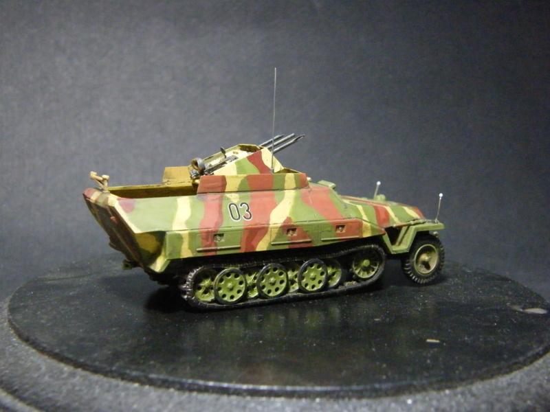 Sdkfz 251/21 Hasegawa/cmk - Terminé Dscf1115