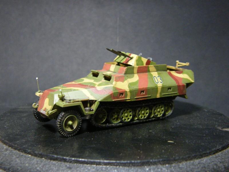 Sdkfz 251/21 Hasegawa/cmk - Terminé Dscf1116