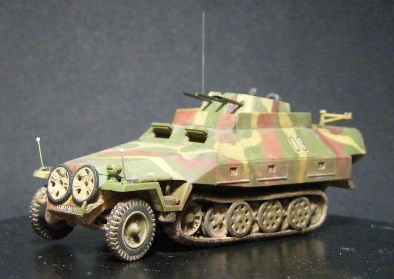 Sdkfz 251/21 Hasegawa/cmk - Terminé Dscf1120