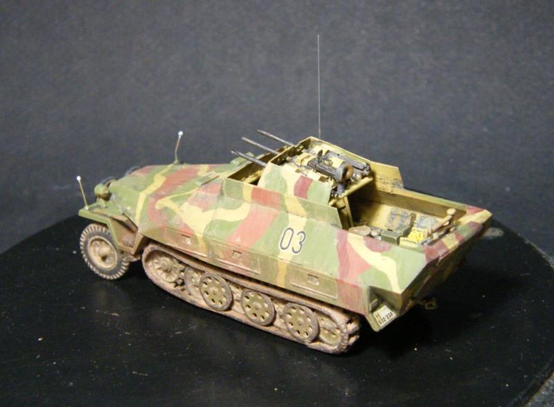 Sdkfz 251/21 Hasegawa/cmk - Terminé Dscf1123