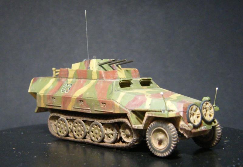 Sdkfz 251/21 Hasegawa/cmk - Terminé Dscf1124