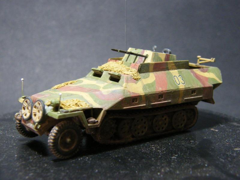 Sdkfz 251/21 Hasegawa/cmk - Terminé - Page 2 Dscf1145