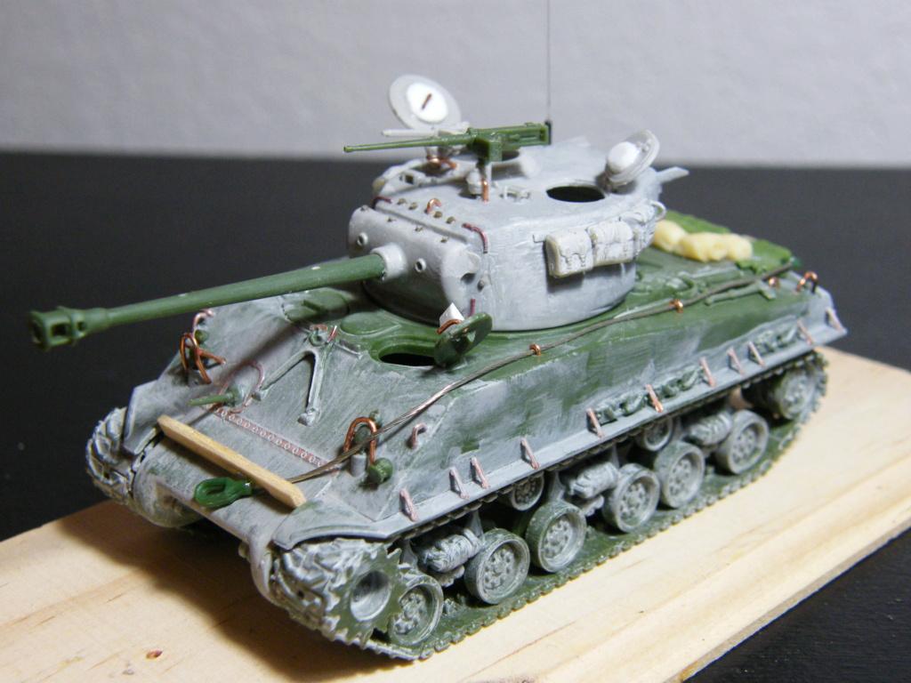 Sherman Fury [Terminé] Dscf8510