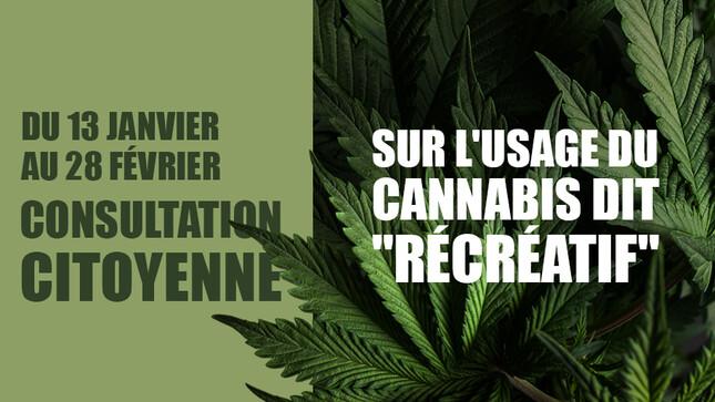 Quel intérêt au Cannabis? - Page 2 Cannab10
