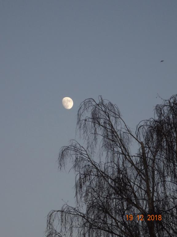 Pleine lune du 22décembre  Dsc05810