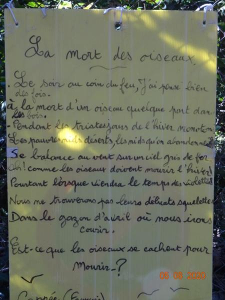 Poème  - Page 7 Dsc08510