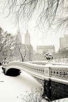 Images d'hiver - Page 3 0c4a5810