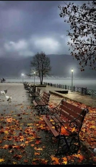 Images d'automne  - Page 2 99181510