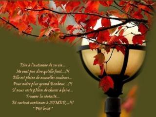 Images d'automne  - Page 5 A0fdb310