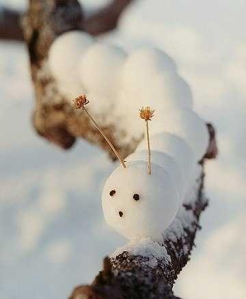 Images d'hiver - Page 3 Afe6e010
