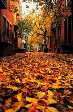 Images d'automne  - Page 2 La-pti10