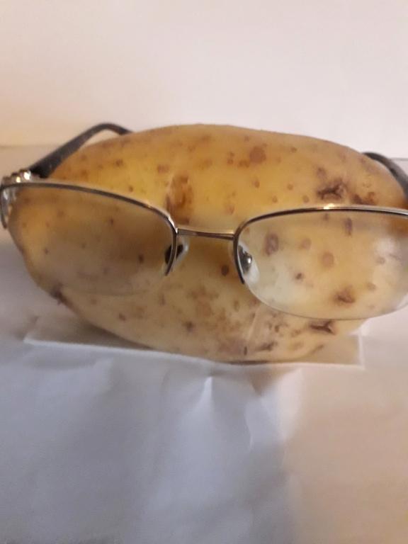 Potato Prize entries Spec_t10