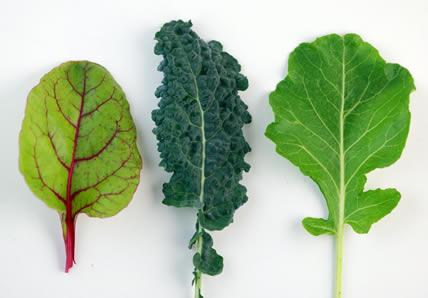 Les 10 meilleurs aliments pour élever votre vibration Feuill10