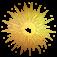 Mi-Septembre 2021 Logo_a10