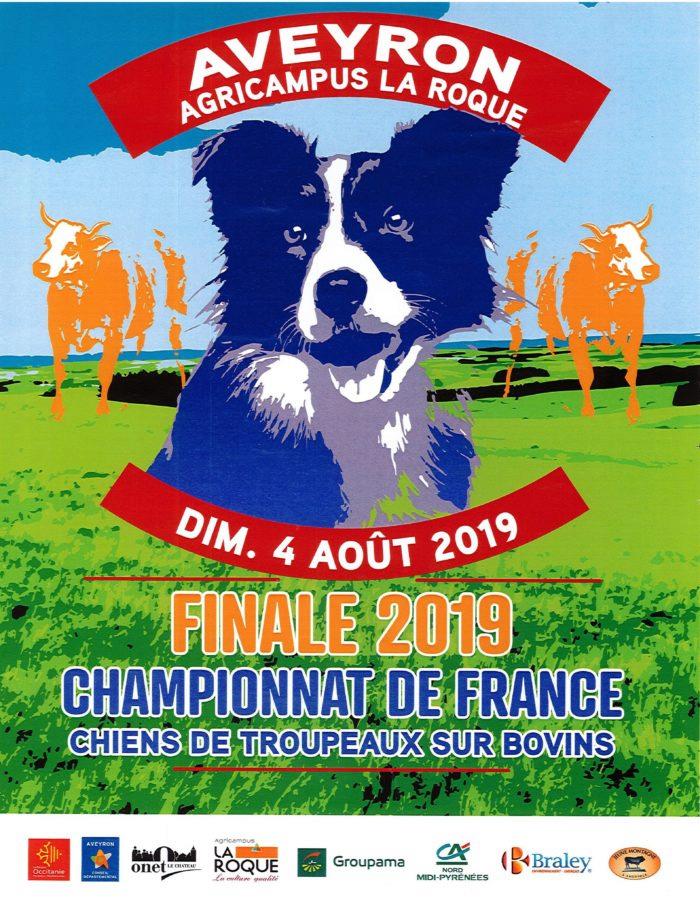 chien - finale chien de troupeau  2019 RODEZ Finale10