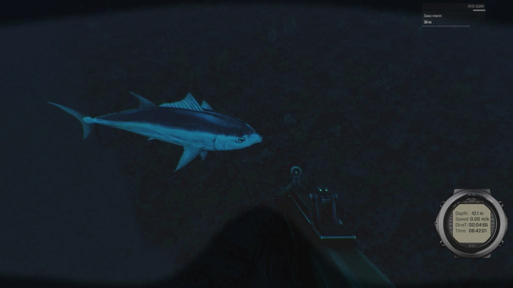 plongee a la recherche de l epave Arma3_15