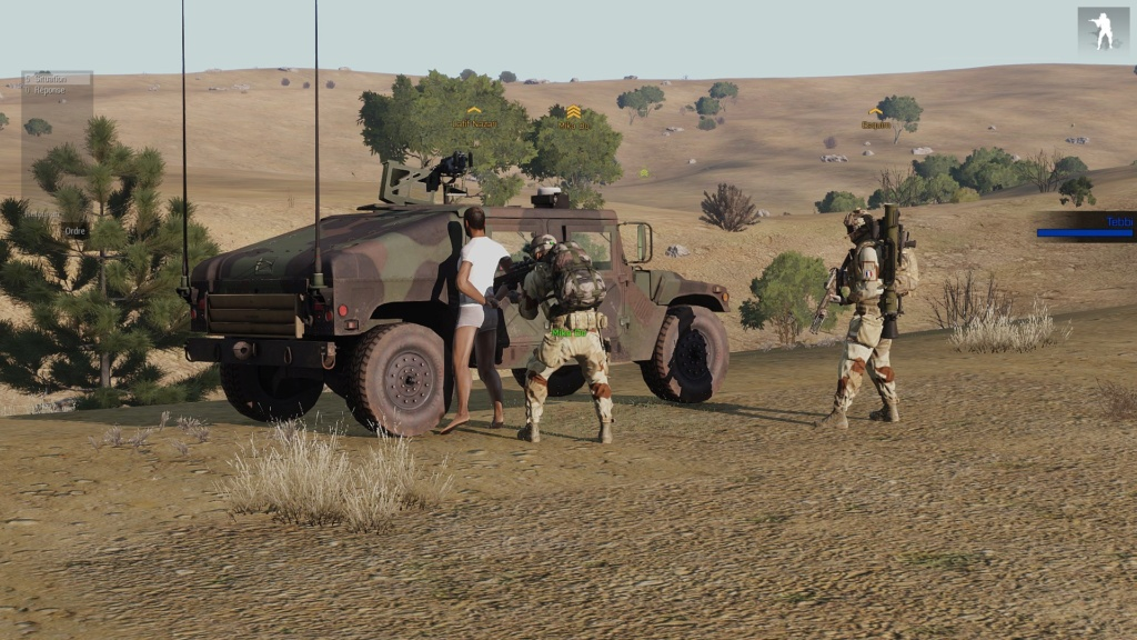 LIBERATION SUR ANISAY Arma3_87