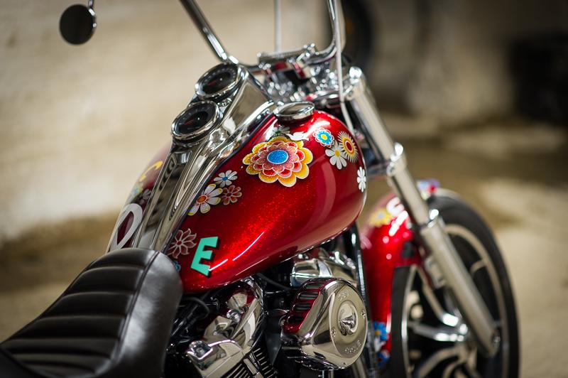 Low Rider WR _nd37828
