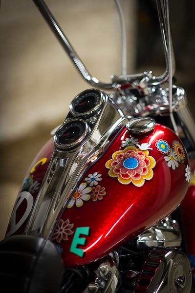 Low Rider WR _nd37829