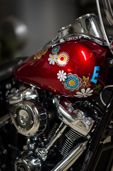 Low Rider WR _nd37830