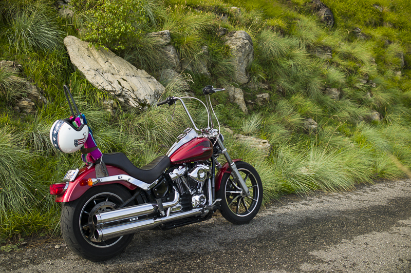 Que choisir: Dyna Low Rider 103 ou Softail Low Rider 107? - Page 8 L1002639
