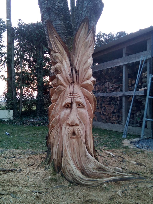 sculpture à la tronçonneuse dans un cerisier Img_2012
