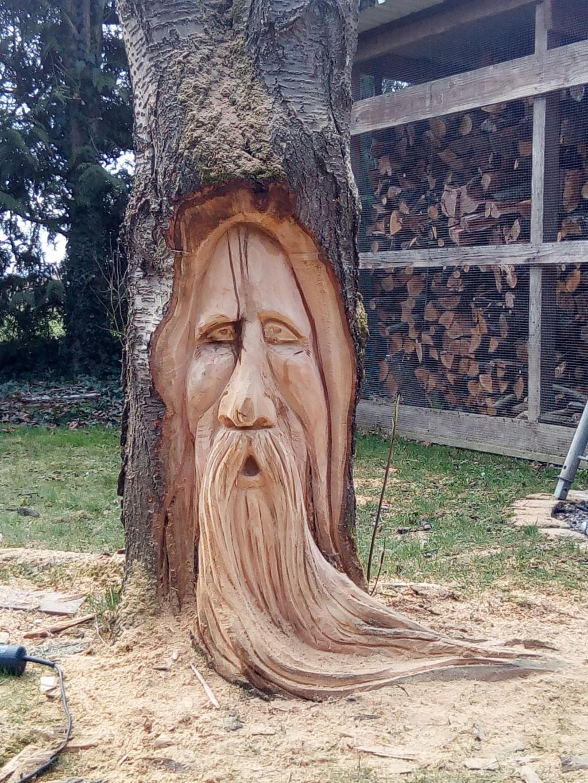 sculpture à la tronçonneuse dans un cerisier Img_2013