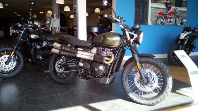 Triumph 900 Scrambler Kaki  Img_2021