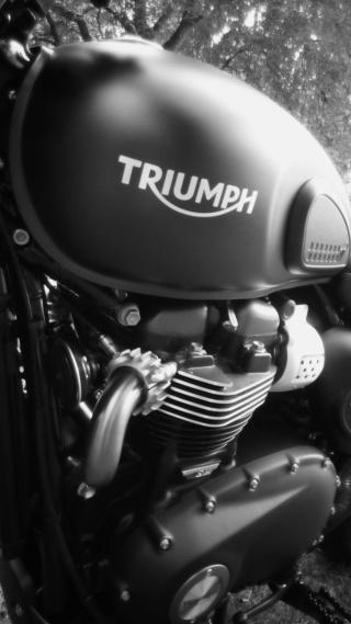 Triumph 900 Scrambler Kaki  Img_2024