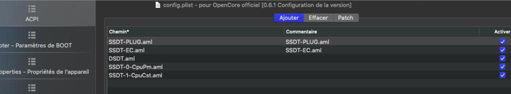 Problème au début de l'installation Big Sur  sur mon PC Captur22