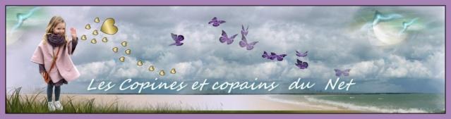 Les Copines et Copains du net