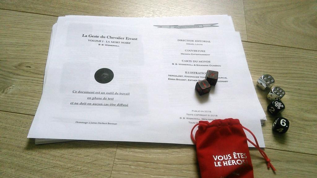 Chevalier Errant (en cours de préparation) - Page 2 Img_2010