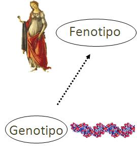 Resistencia Bacteriana de nueva generación. - Página 27 Genoti10
