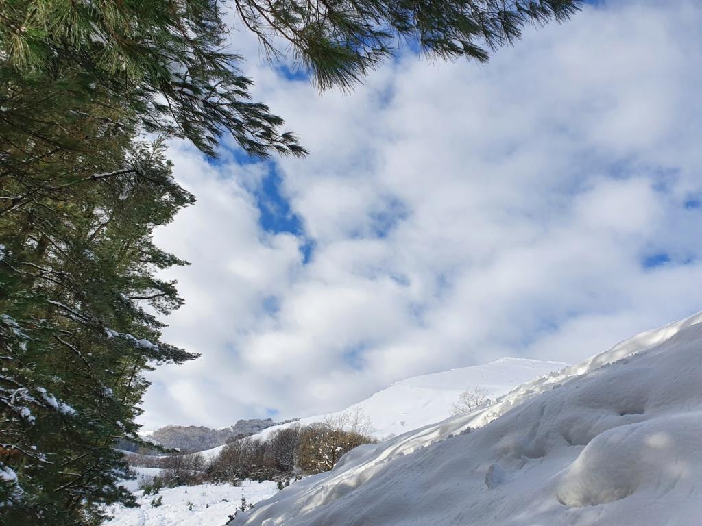Topic:Deportes de Montaña..Escalada, Senderismo,Barranquismo....... - Página 14 20210112