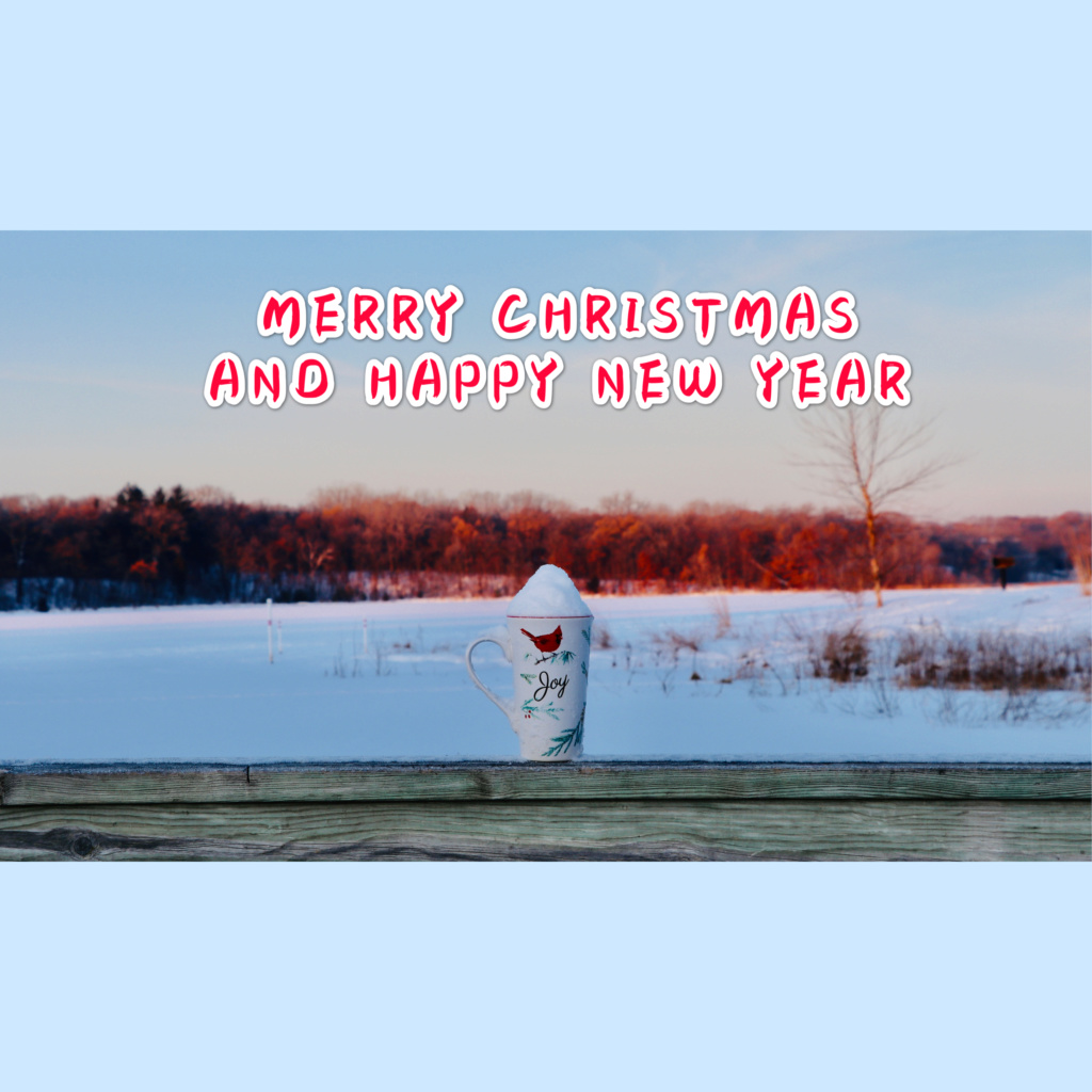 MERRY CHRISTMAS & HAPPY NEW YEAR !! 40573110