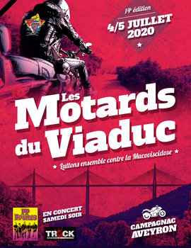 Viaduc de Millau Viaduc10