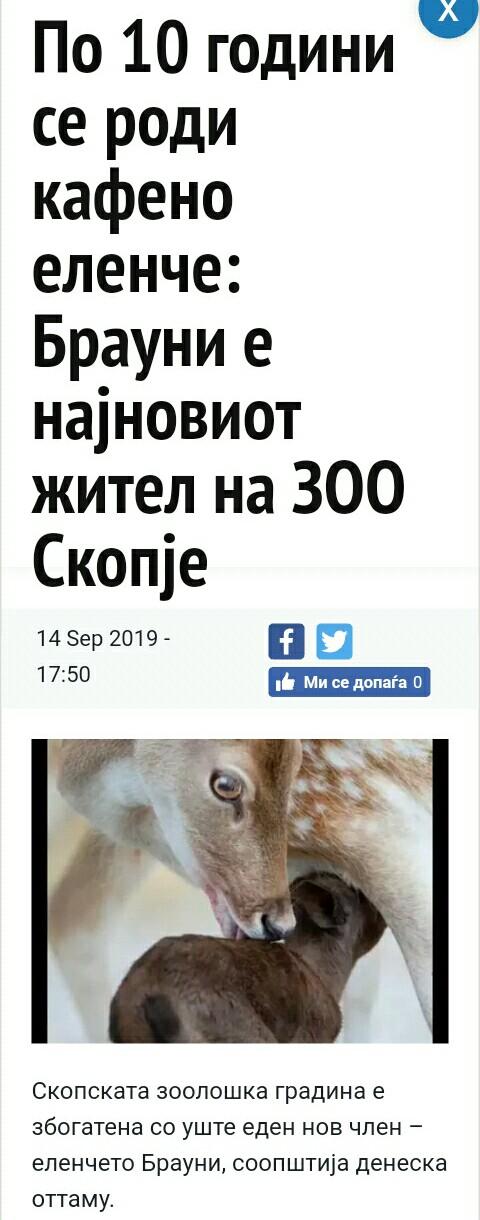 NOVOSTI Img_2012
