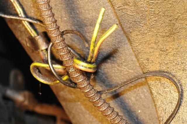 Corvette C3 1971 : Après le nid douillet, se refaire une santé Electr12