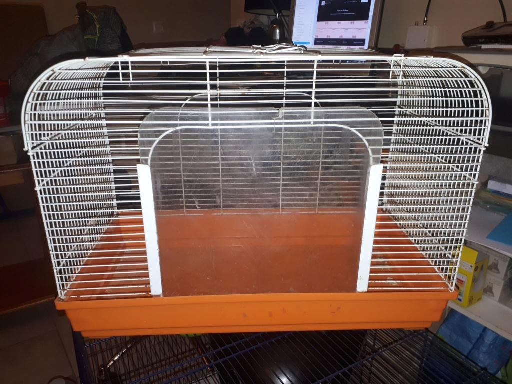 A vendre : 4 Cage différentes (Rats et petits rongeurs)  C_o_110